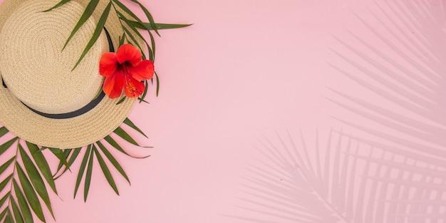 Tropische palmbladeren monstera op papier achtergrond.