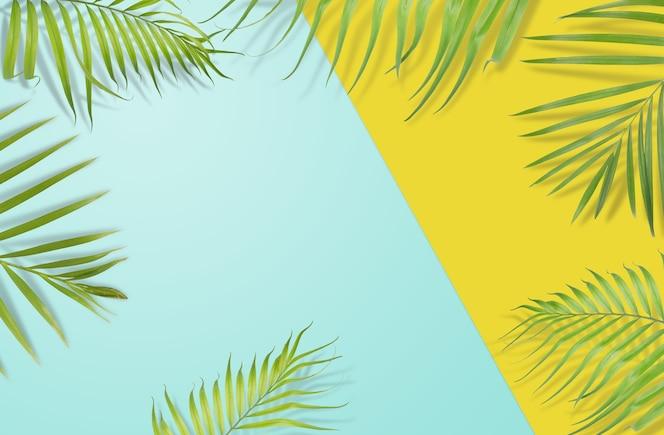 Tropische palmbladeren op gele en lichtblauwe achtergrond. minimale natuur. zomer gestileerd.