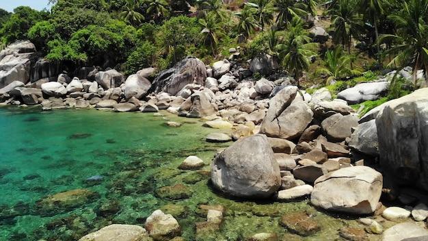 Tropische palmen en stenen op klein strand