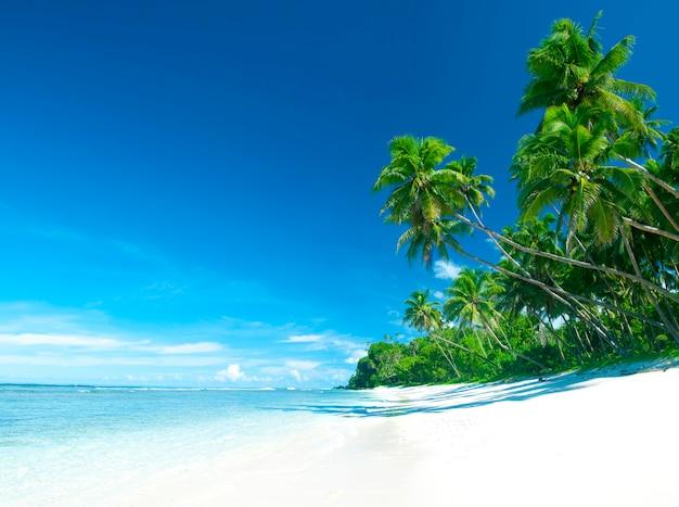 Tropische strandbestemming.