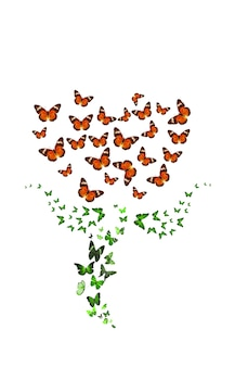 Tropische vlinders in de vorm van een bloem. geïsoleerd op een witte achtergrond. rode tulp. hoge kwaliteit foto