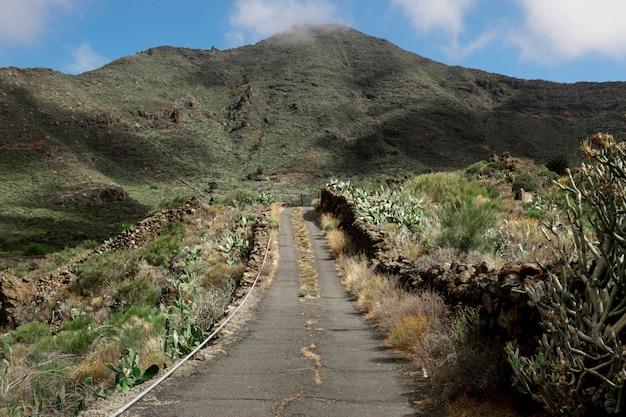 Tropische weg in de bergen