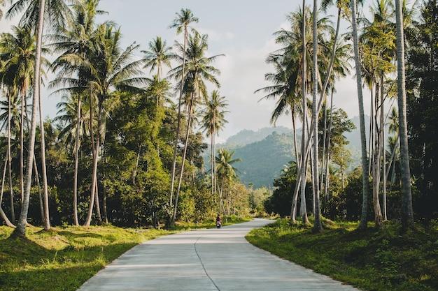 Tropische weg in het paradijs van thailand