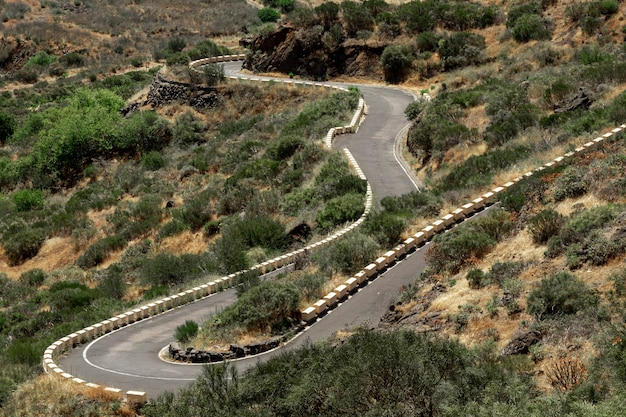 Tropische weg met woestijnachtergrond