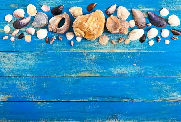 Tropische zee achtergrond. verschillende schelpen op de blauwe borden, bovenaanzicht. vrije ruimte voor inschrijvingen. zomer thema.