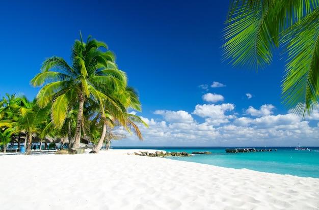 Tropische zee onder de blauwe lucht