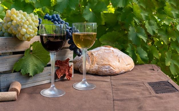 Trossen van rode en witte druiven en rode en witte wijn in glazen