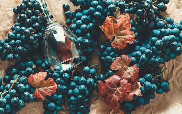 Trossen zwarte druiven met bladeren en een glas wijn vullen het hele vliegtuig.