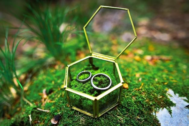 Trouwringen close-up liggend op mos