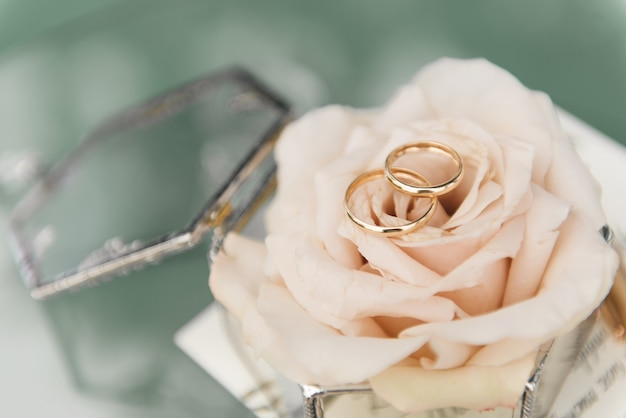 Trouwringen in een doos met bloemen, decor en details van de huwelijksceremonie, selectieve aandacht, macro
