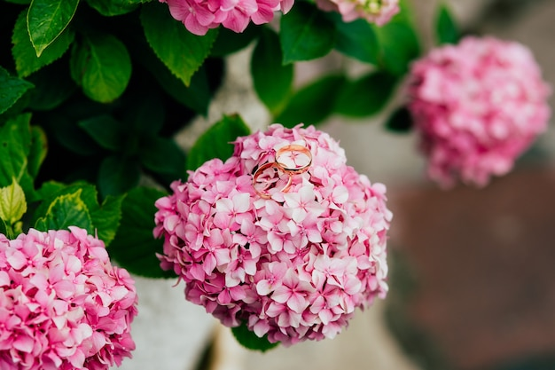 Trouwringen op bloemen