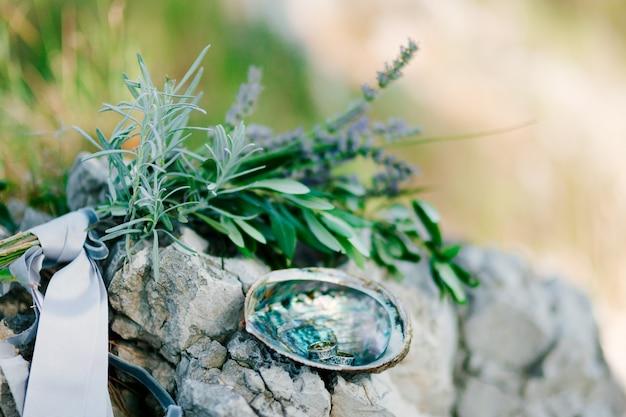 Trouwringen op de steen en de olijftak trouwjuwelen