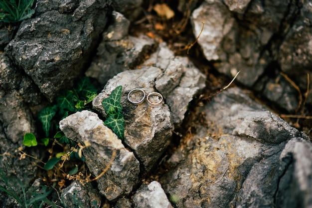 Trouwringen op de stenen in het gras