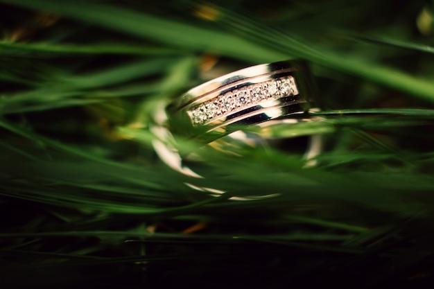 Trouwringen. sieraden in wit en geel goud. trouwring op groen