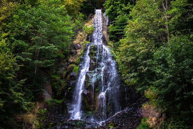 Trusetaler waterval stroomt door het bos in duitsland