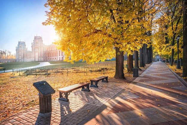 Tsaritsyno palace in moskou en de gouden bomen van de steeg in het park op een zonnige herfstochtend