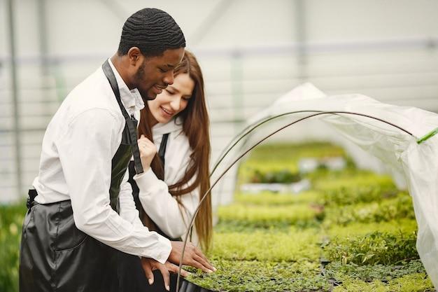 Tuinders in kas zijn aan het werk. jongen en meisje in schorten. verzorging van planten.