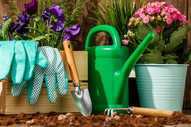 Tuingereedschap en bloemen