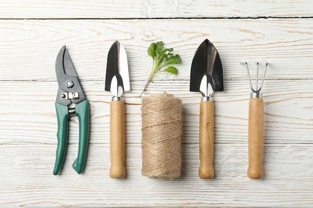 Tuingereedschap en spruit op houten, bovenaanzicht