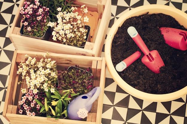 Tuingereedschap en zaailing van lentebloemen voor planten op bloembed in de tuin, patio of terras.