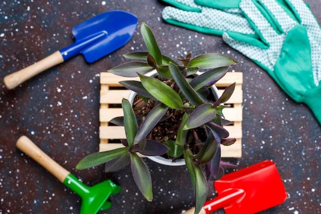 Tuingereedschap op donkere tafel met kamerplant en handschoenen