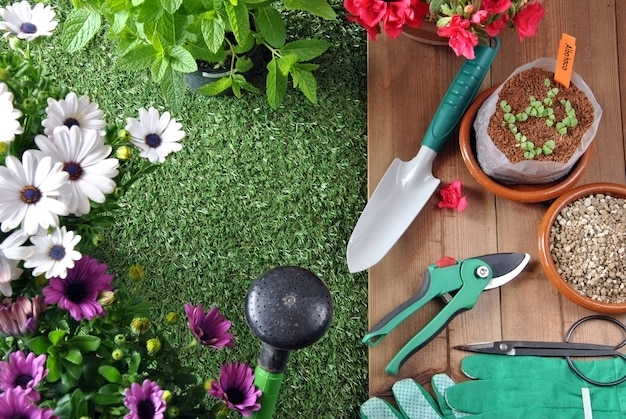Tuingereedschap op gras en houten tafel met verschillende soorten planten