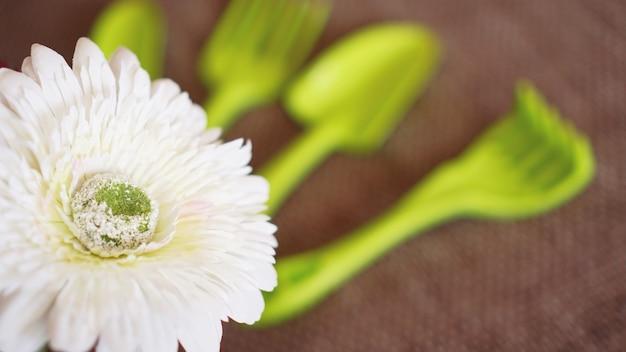 Tuinieren achtergrond. groene gereedschappen en bloemen tuinieren - soft focus