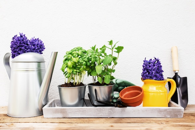Tuinieren hobby concept hyacint munt en basilicum in metalen pot tuin hooivork