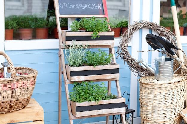 Tuinieren. spring garden groeiende planten in potten. rieten manden naast het tuinmateriaal tegen de muur van een blauw buitenhuis. zomerse seizoensvakantie. de inrichting van het landhuis in de achtertuin