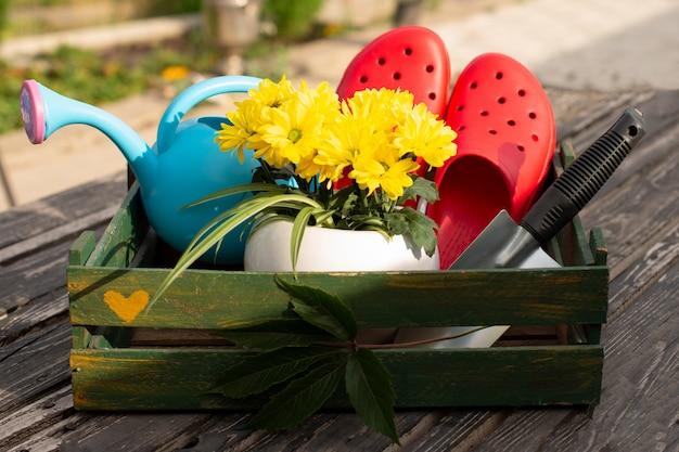 Tuinieren. werk in de tuin. tools, gieter en bloem in een pot op een achtergrond van groene bladeren. donkere houten achtergrond. ruwe planken