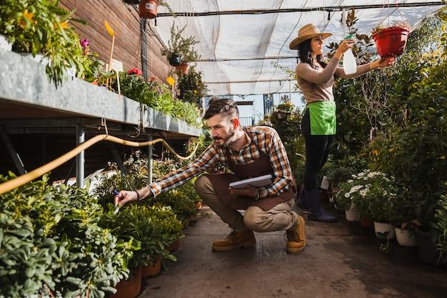 Tuinlieden die in serre werken