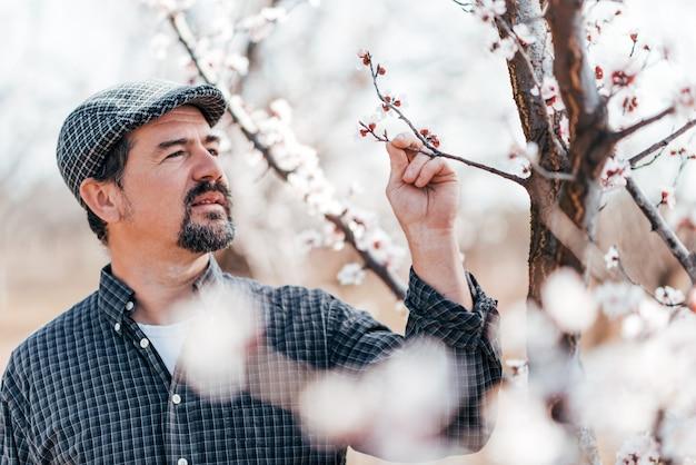 Tuinman die fruitbloemen bekijken in openlucht.
