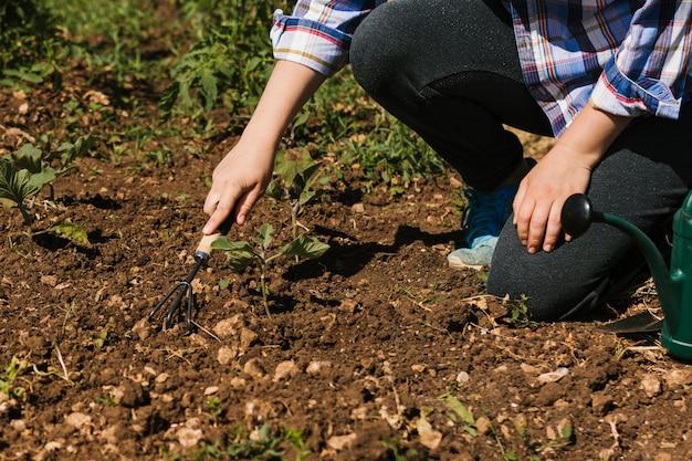 Tuinman die in de tuin knielt