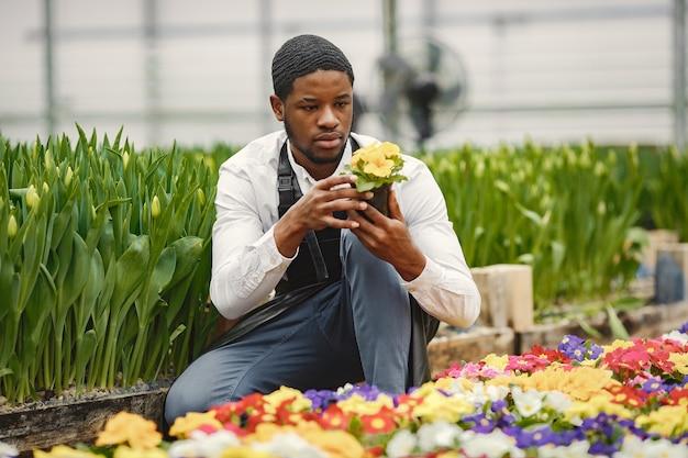Tuinman in een schort. afrikaanse man in een kas. bloemen in een pot.