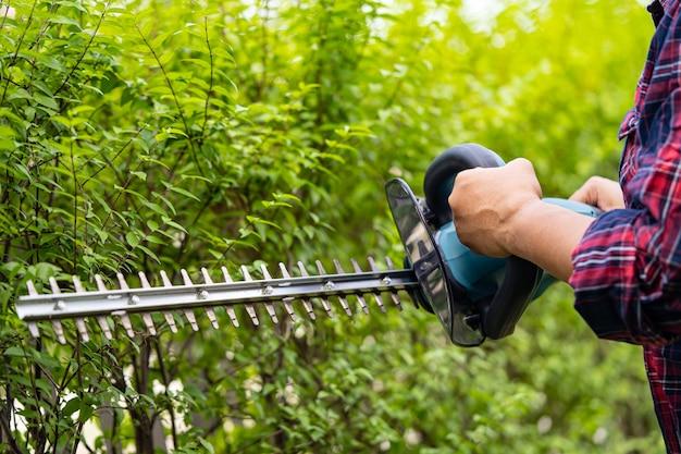 Tuinman met elektrische heggenschaar om de boomtop in de tuin te knippen.