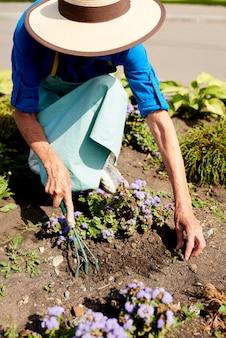 Tuinman planten van bloemen