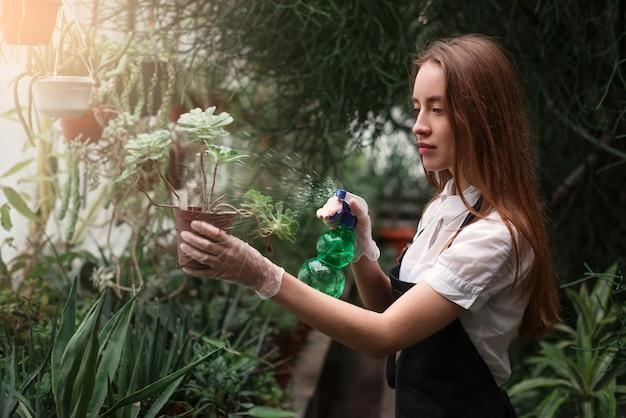 Tuinman sproeien van water op bloemen
