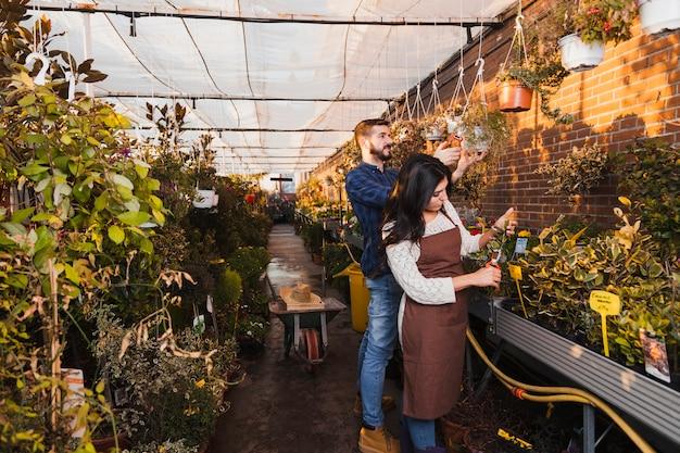 Tuinmannen die installaties snijden