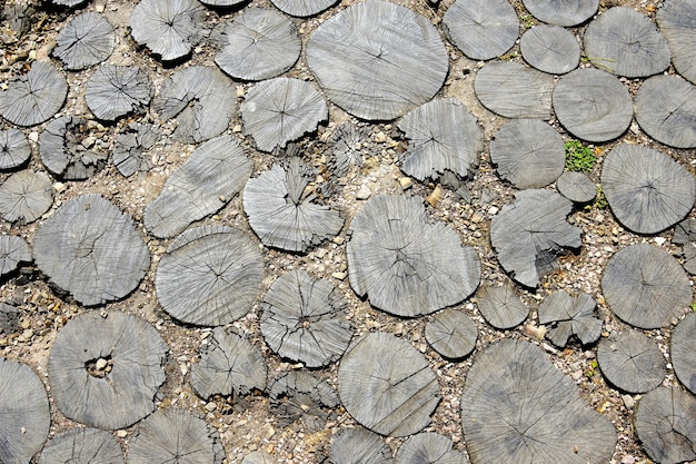 Tuinpad weg van gesneden stronken, loopbrug van dwarsdoorsnede van boomstammen