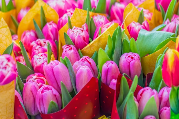 Tulp bloemen boeketten achtergrond