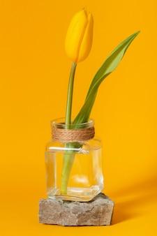 Tulp in een transparante vaas geïsoleerd op geel