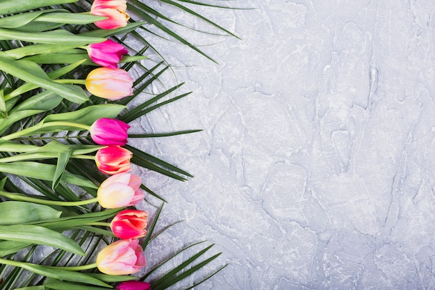 Tulpen en bladeren van palm in de rij
