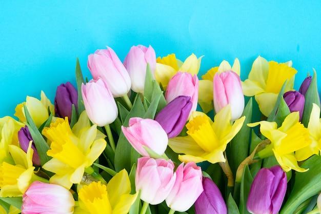Tulpen en gele narcissen bloemen geïsoleerd