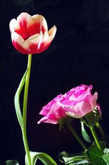 Tulpen en rozen op zwart