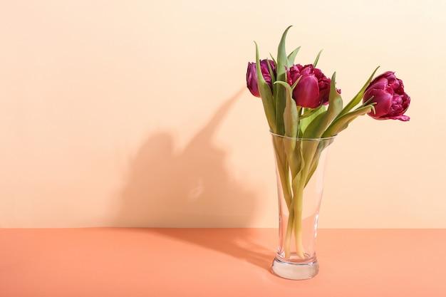 Tulpen in een vaas op helder, de ochtendschaduw tegen zonlicht. concept art voor wenskaart.