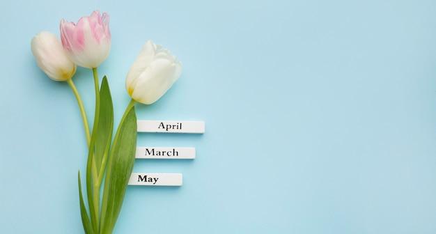 Tulpen met labels van lentemaanden