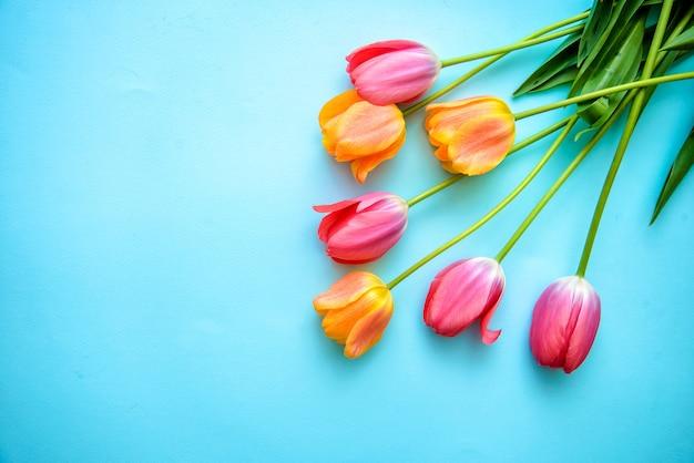 Tulpen op blauwe achtergrond met kopie ruimte