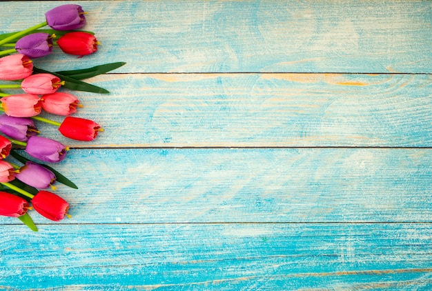 Tulpen op blauwe houten achtergrond