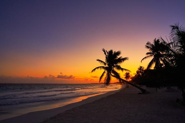 Tulum strand zonsondergang palmboom riviera maya