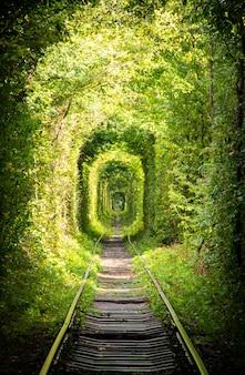 Tunnel gemaakt van planten en spoorwegen